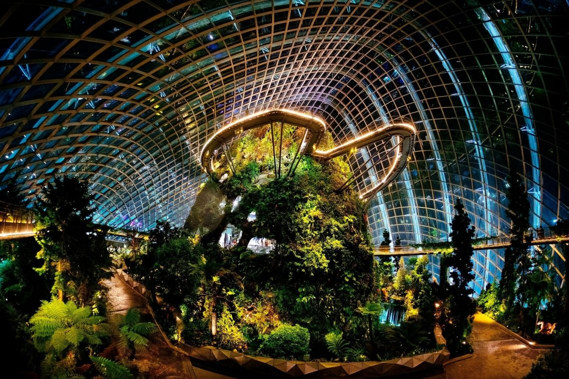 Gardens by the Bay | Attractions in Singapore | Park Hotel Group